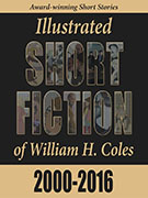 https://www.storyinliteraryfiction.com/reviews/short-fiction-2000-2016/